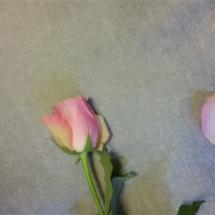 rosenbadesalz1